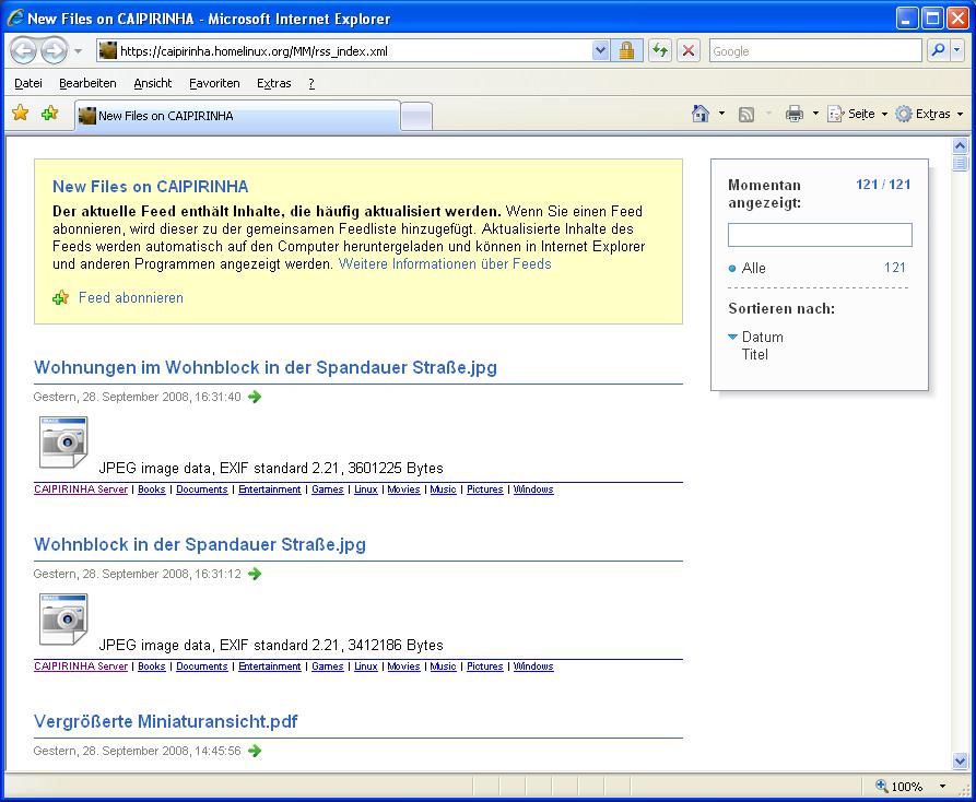 Internet Explorer View